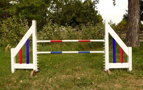 about agility for dogs | Lolla and Lilly
